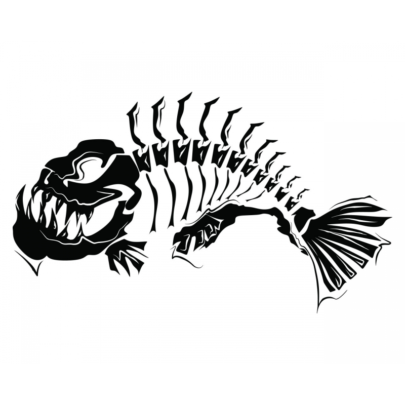 Fish Skeleton Drawing Previous Fish Skeleton