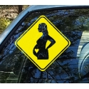 Pregnant Baby on Board Safety Sign Car Decal Vinyl Sticker