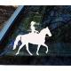 Cowgirl On horse Vinyl Decal for Car, Window bumper Tattoo Sticker