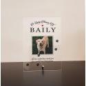 Pet loss Dog Cat Horse Photo Plaque RIP Keepsake Remembrance Condolence Gift
