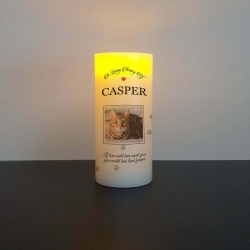 Pet Photo RIP flameless flickering LED Wax Candle dog cat horse Memorial gift