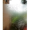 CLEAR BLOOM TREE FROSTED WINDOW PRIVACY FILM 1M /M
