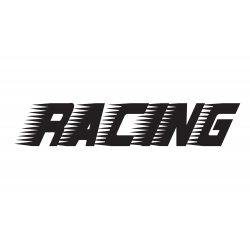 SPEEDY RACING LETTERING CAR BOAT TATTOO VINYL DECAL STICKER