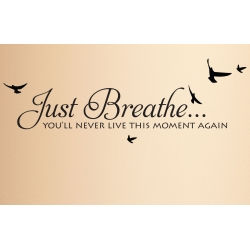 Just Breathe you'll never live this moment again Wall Decor Vinyl Decal Sticker