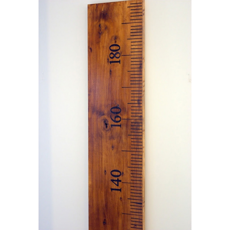 Ruler Wall Vinyl Decal Sticker Growth Chart Kit Diy Wooden Vintage