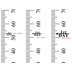 Growth Chart Ruler Add-On Custom Family Name Vinyl Decal Sticker for Side