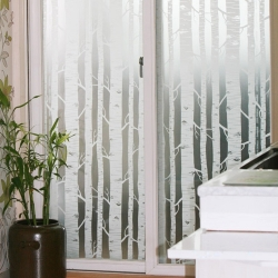 1M/1.2M WHITE BIRCH TREE FOREST FROSTED WINDOW FILM 24H PRIVACY GLASS