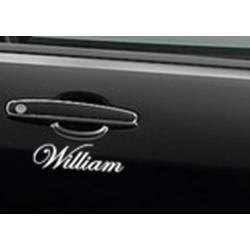 CUSTOM NAME VINYL LETTERING CAR BOAT DECAL CURLY SCRIPT DECORATIVE SERIF FANCY